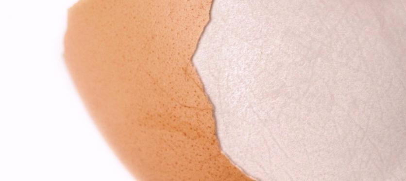 Eggshell Membrane (ESM®)